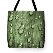 Green Leaf Abstract With Raindrops Tote Bag by Elena Elisseeva