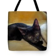 Hamming It Up Tote Bag by Michelle Milano