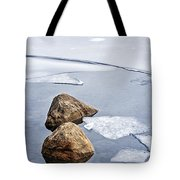 Icy Shore In Winter Tote Bag by Elena Elisseeva