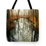 Just One Wish Tote Bag by Diana Angstadt