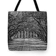 Oak Alley Bw Tote Bag by Steve Harrington