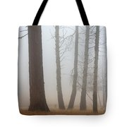 Out of the Fog Tote Bag by Mike  Dawson