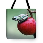 Pacific Tree Frog On A Crab Apple Tote Bag by David Nunuk