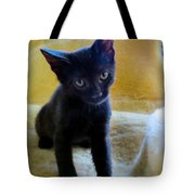 Posing  Tote Bag by Michelle Milano