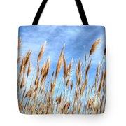 Sea Breeze Tote Bag by Kelvin Booker