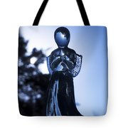 Shadows From Heaven Tote Bag by Sharon Cummings