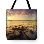Sunset Light Tote Bag by Debra and Dave Vanderlaan