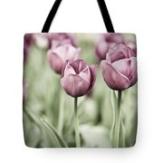 Tulip Garden Tote Bag by Frank Tschakert