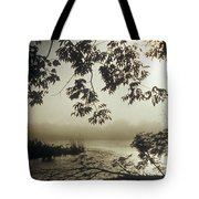 Ussuri Territory The Ussuri River Tote Bag by Anonymous