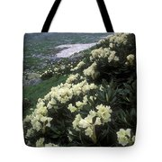 Wild Rhododendrons On A Hillside Tote Bag by Anonymous