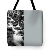 Winter Rapids Tote Bag by Adrian Evans