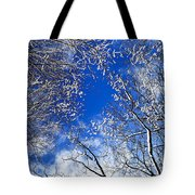 Winter Trees And Blue Sky Tote Bag by Elena Elisseeva