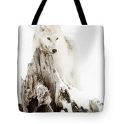 Arctic Wolf Pup Tote Bag by Wolves Only
