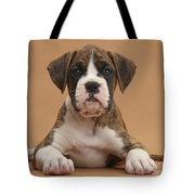 Boxer Puppy Tote Bag by Mark Taylor