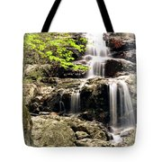 1201 Tote Bag by Marty Koch