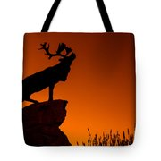 130918p141 Tote Bag by Arterra Picture Library