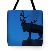 130918p145 Tote Bag by Arterra Picture Library