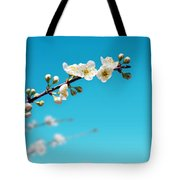 Almond Branch Tote Bag by Carlos Caetano
