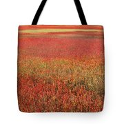Autumn Blueberry Field Maine Tote Bag by Scott Leslie
