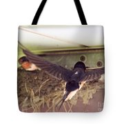 Barn Swallows Constructing Their Nest Tote Bag by J McCombie