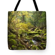 Beauty Creek Tote Bag by Idaho Scenic Images Linda Lantzy