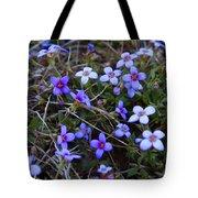 Bluets Tote Bag by Kathryn Meyer