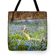 Carpet Of Blue Flowers In Spring Forest Tote Bag by Elena Elisseeva