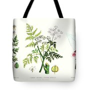 Common Poisonous Plants Tote Bag by English School