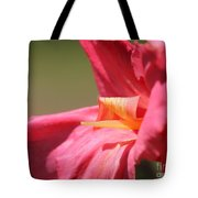 Dwarf Canna Lily Named Shining Pink Tote Bag by J McCombie