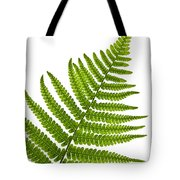Fern Leaf Tote Bag by Elena Elisseeva