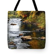 Forest River In The Fall Tote Bag by Elena Elisseeva