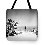 Grand Canyon: Sightseer Tote Bag by Granger
