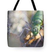 Green Grasshopper Ephippiger Tote Bag by Jivko Nakev