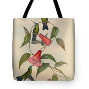 Hummingbirds Tote Bag by Philip Ralley