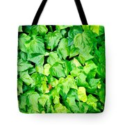 Ivy Tote Bag by Les Cunliffe