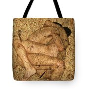 Kuma Sutra Tote Bag by Kurt Van Wagner