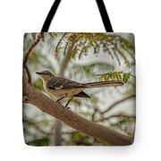 Mockingbird Tote Bag by Robert Bales