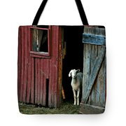 My Little Friend Tote Bag by Diana Angstadt