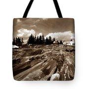 PEMAQUID ROCKS Tote Bag by Skip Willits
