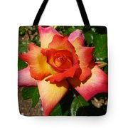Rainbow Sorbet Rose Tote Bag by Denise Mazzocco