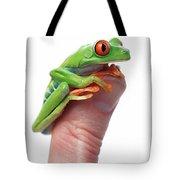Red-eyed Tree Frog Agalychnis Callidryas Tote Bag by Corey Hochachka