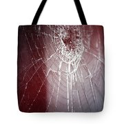 Shattered Dreams Tote Bag by Trish Mistric