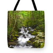 Smoky Mountain Stream Tote Bag by Frozen in Time Fine Art Photography