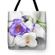 Spring Crocus Flowers Tote Bag by Elena Elisseeva