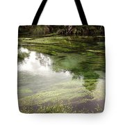 Spring Water Tote Bag by Les Cunliffe