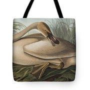 Trumpeter Swan Tote Bag by John James Audubon