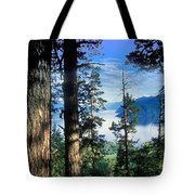 Altay Lakes Teletskoe Tote Bag by Anonymous