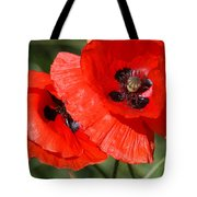 Beautiful Poppies 2 Tote Bag by Carol Lynch
