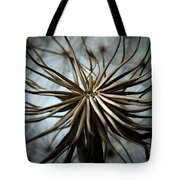 dandelion Tote Bag by Stylianos Kleanthous