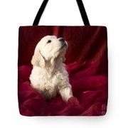 Golden Retriever Puppy Tote Bag by Angel  Tarantella